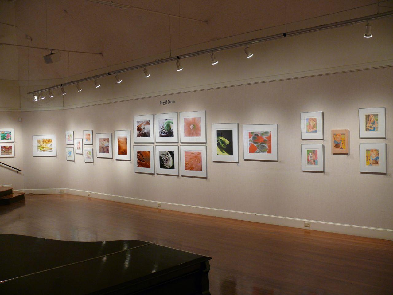 Installation photo of Nature +/- Nurture Exhibition