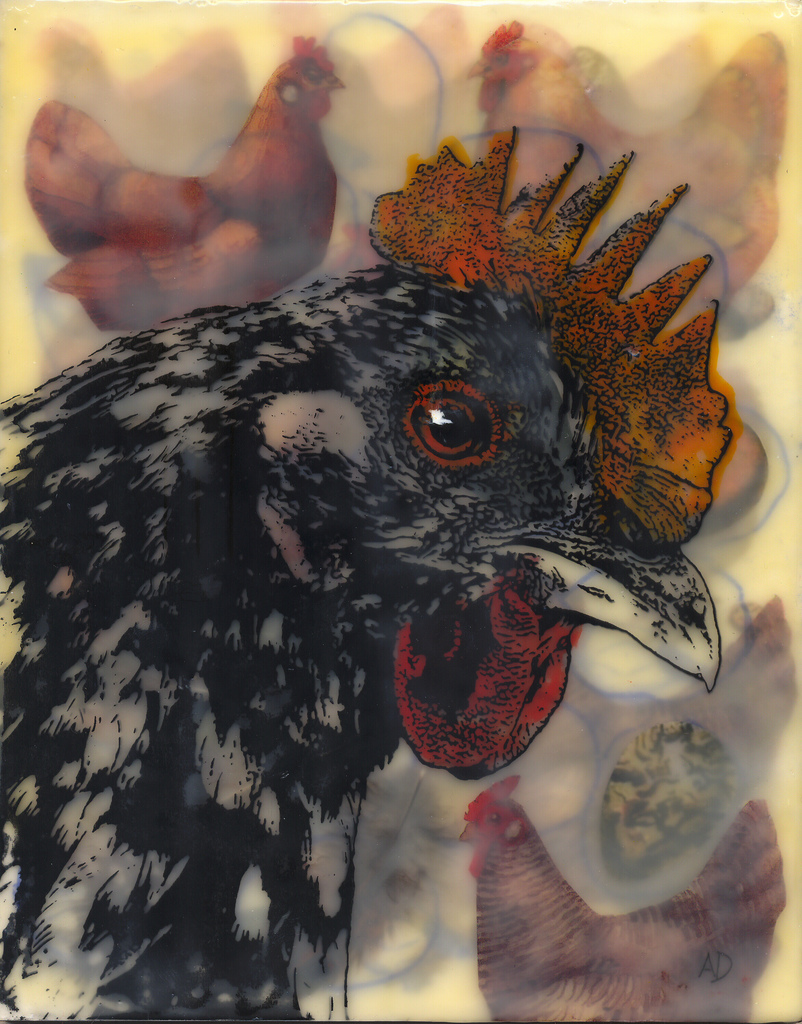 Sheba, Queen of the Roost, 10x8, encaustic
