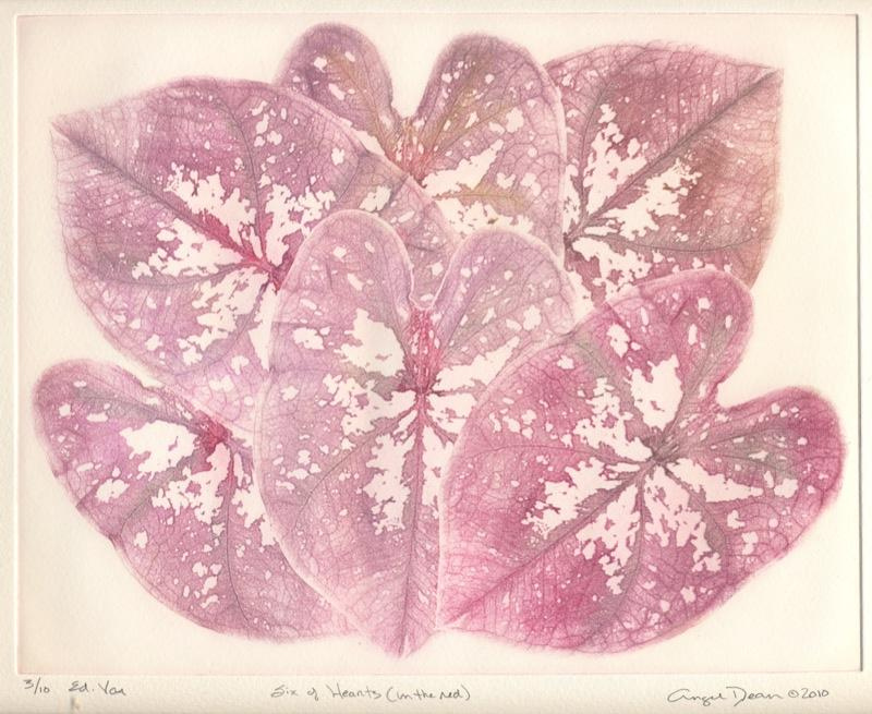 Six of Hearts (in the red), solarprint